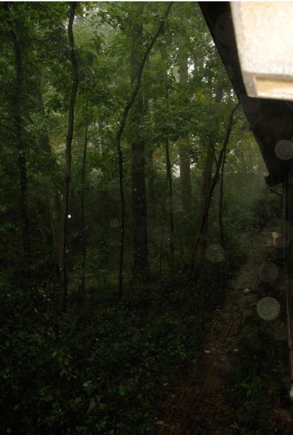 poem_Picture_rainy