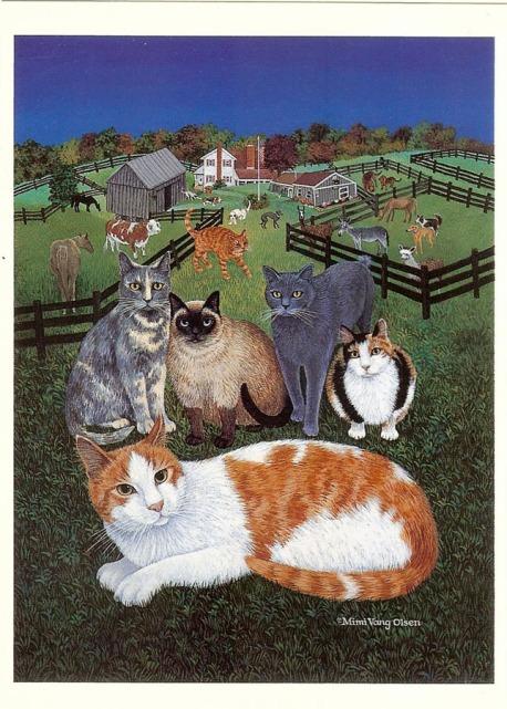 Grey Cat 1.jpeg