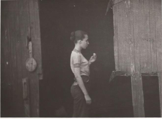 14. barn door