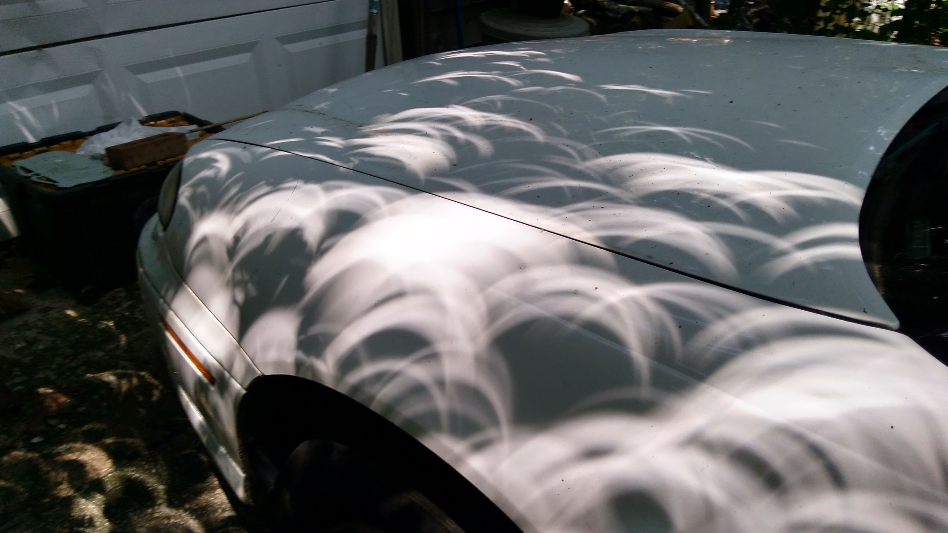 car hood crescents.jpg