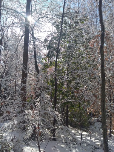 11 snow poem pic