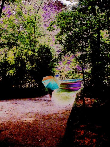3 kylett_umbrella_drive