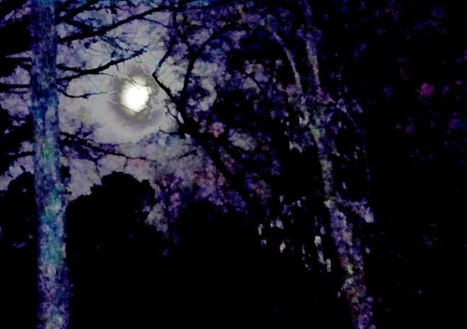 66. blue moon 2.jpg