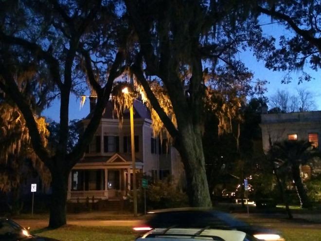 37. street light.jpg